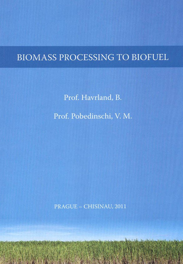 Biomass Processing to Biofuel